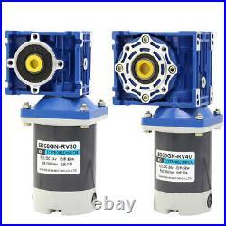 RV40 RV30 Worm Gear Motor 24V High Torque Reduction Gear Box Motor 21 420 RPM
